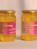 Imkerij de Werkbij Acaciahoning 450 gr.