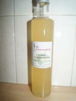 De Limonaderij (H)eerlijke Vruchtenlimonadesiroop Munt Citroen